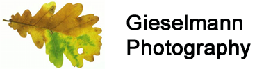 Gieselmann-Photography